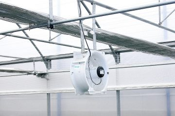 Exhaust and Circulation Fans